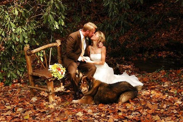 Что надеть на свадьбу осенью, какое платье