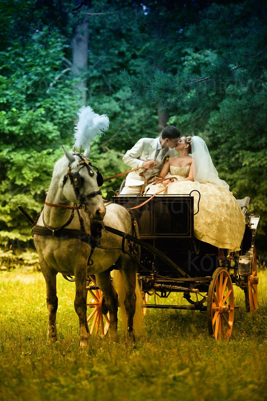 Свадебная прогулка на лошадях в Москве